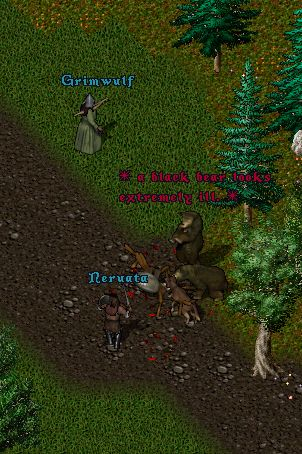 Pic Of the Day for Wednesday, July 21, 2010! Grimwulf, Neruata and their pack of animals take on some bad guys in the forest